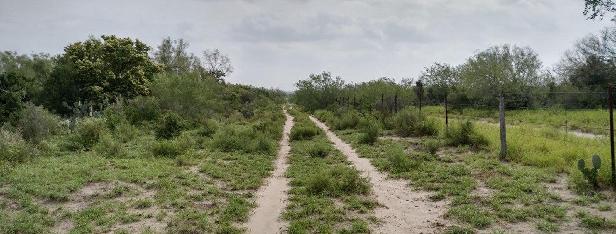 Chihuahua Ranch